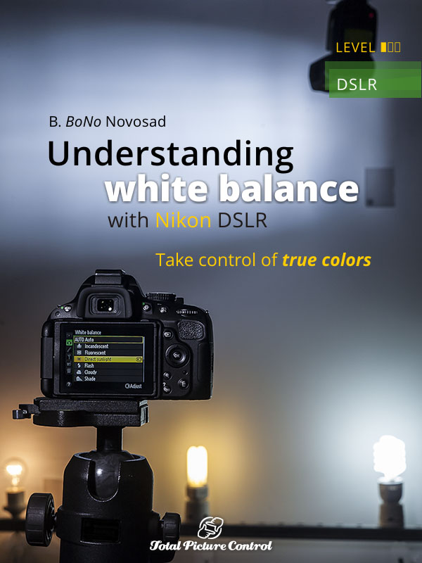 Understanding white balance with Nikon DSLR Take control of true colors